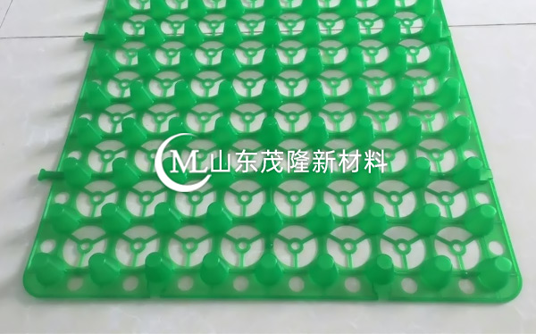 绿色蓄排水板产品演示图1