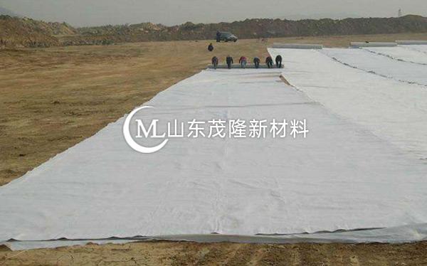 《天府机场TJ6标》土工格栅、土工布、排水板施工