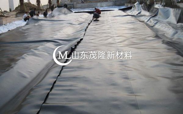 《山东路桥养护公司》HDPE防渗土工膜施工