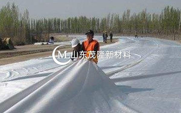 《河北省邯郸园博园》土工布、排水板施工