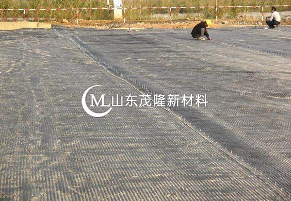 钢塑土工格栅在修路工程中的应用